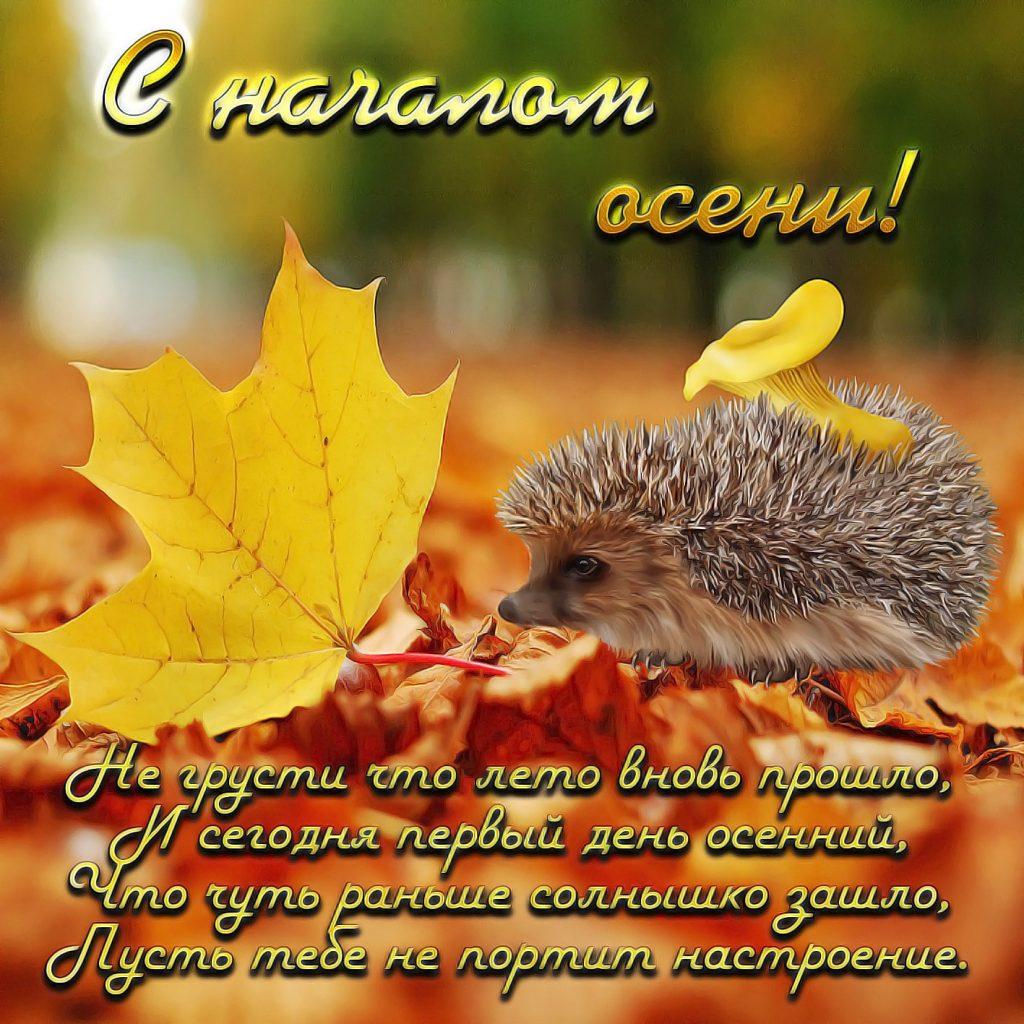 Открытки и картинки про осень