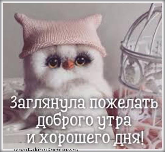 Позитивные картинки с добрым утром для поднятия настроения (12)
