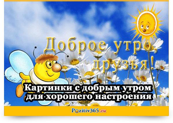 Позитивные картинки с добрым утром для поднятия настроения (13)
