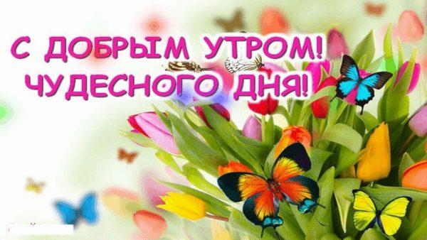 Позитивные картинки с добрым утром для поднятия настроения (4)