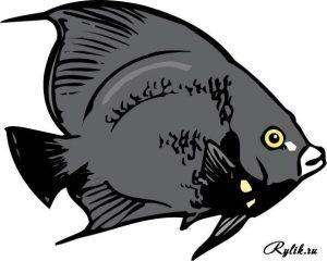 Рыбы нарисованные 018