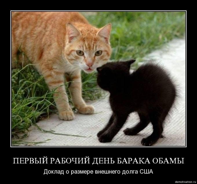 Смешные картинки с надписями черные