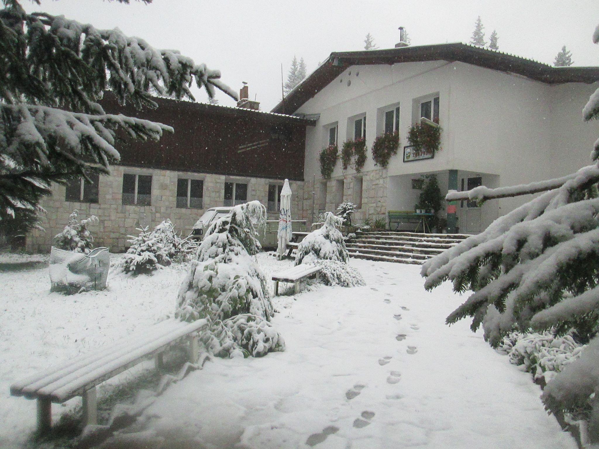 Снег в сентябре картинки прикольные и интересные (12)