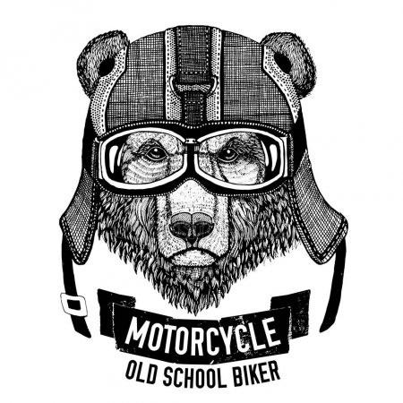 Эмблема медведь 008