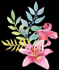 акварельные цветы клипарт 015
