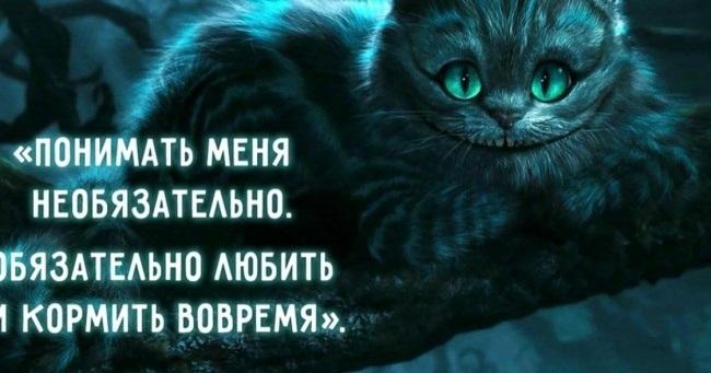 картинки алиса и чеширский кот 009