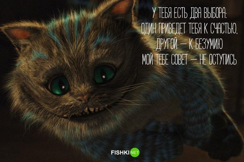 картинки алиса и чеширский кот 018