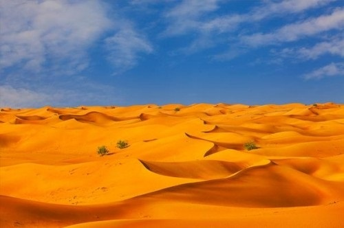 картинки для детей пустыня 002