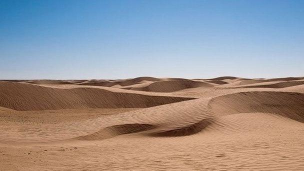 картинки для детей пустыня 003
