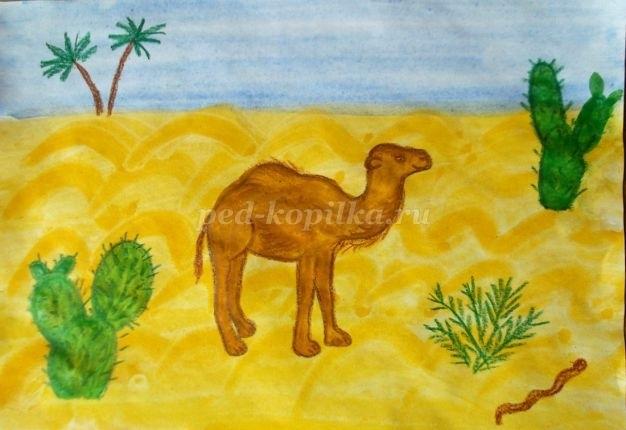 картинки для детей пустыня 009