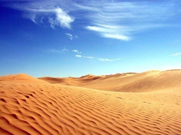картинки для детей пустыня 012
