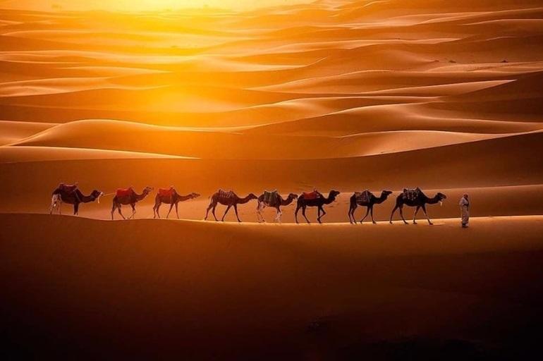 картинки для детей пустыня 019
