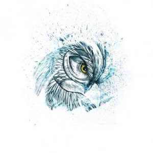 красивый рисунок сова 024
