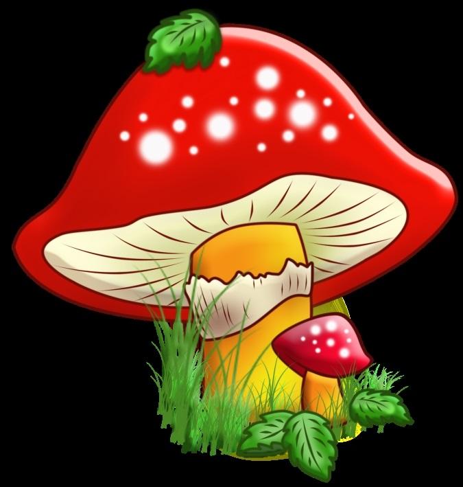 Картинки грибов для детей цветные красивые, самыми