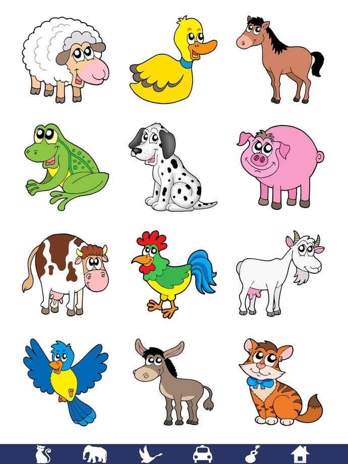 Животные в картинках для детей
