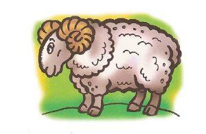 нарисованные цветные картинки животных для детей 014