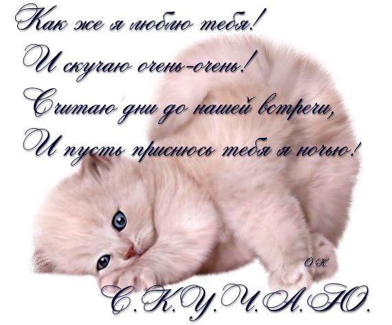 открытки прикольные любимому мужчине 011