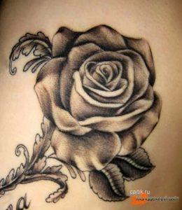 роза рисунок тату для девушки 016