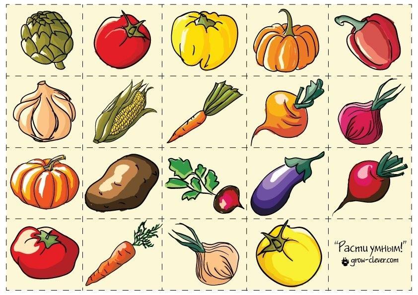шаблон для аппликации овощи 021