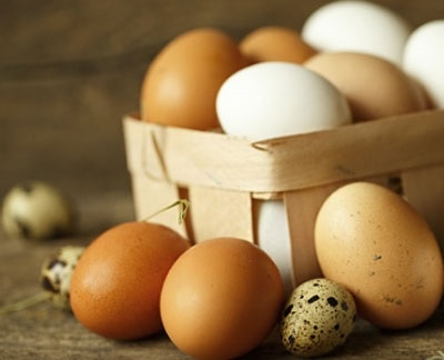 Всемирный день яйца 003