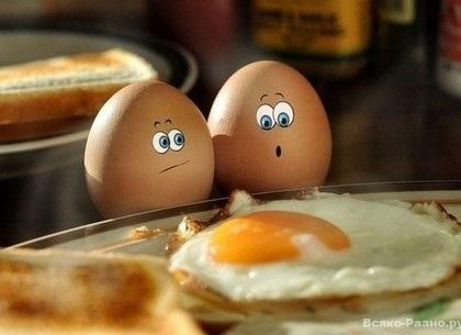 Всемирный день яйца 004