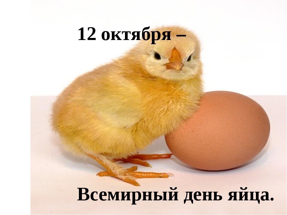 Всемирный день яйца 023