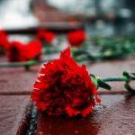 День памяти жертв политических репрессий — подборка (20 фото)