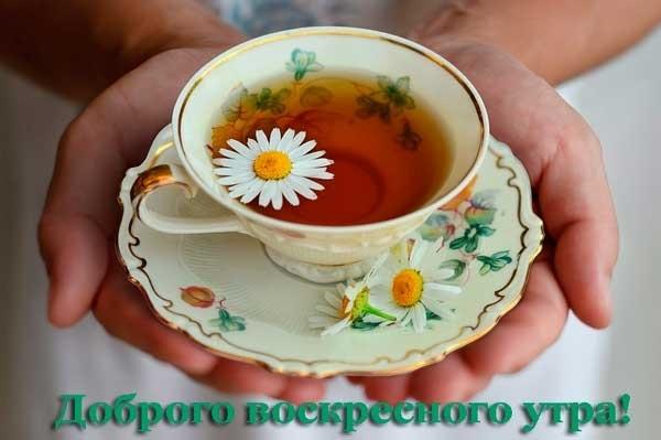 Доброе утро воскресенья красивые картинки012