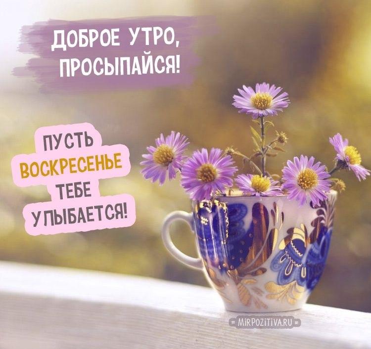 Доброе утро воскресенья красивые картинки018