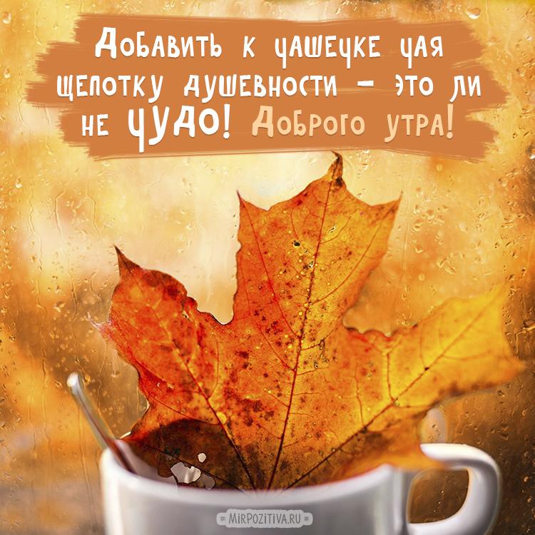 Доброе утро осень красивые картинки (16)