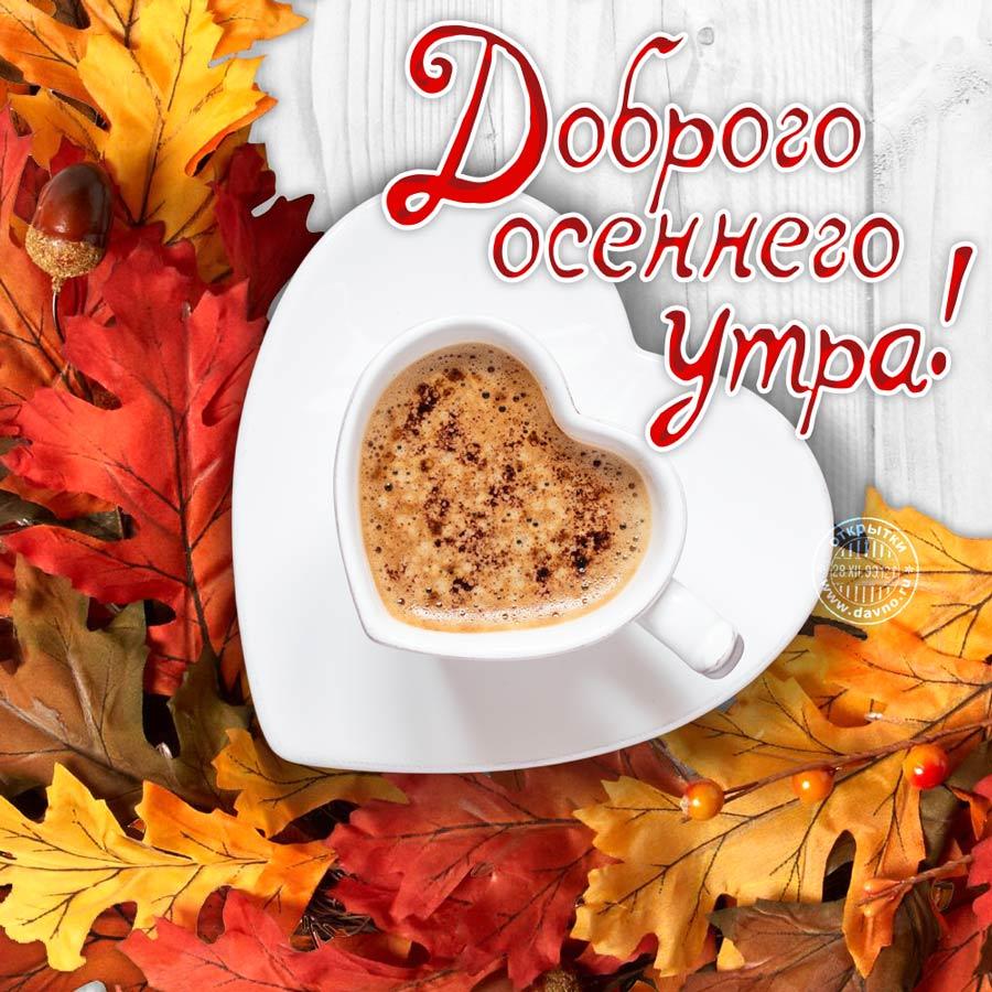 Доброе утро осень красивые картинки (3)
