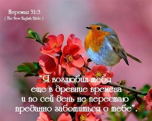 Христианские открытки бог любит тебя, цветы горшке мастер