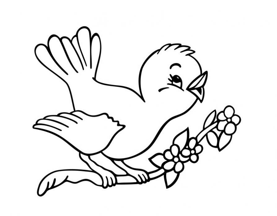 Картинка гнездо раскраска для детей (24 фото)
