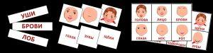 Картинки для детей лицо человека 013