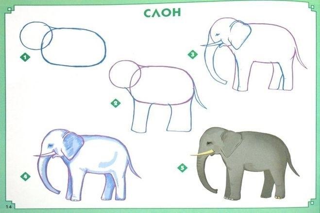 Картинки иллюстрации к басне крылова слон и моська 003