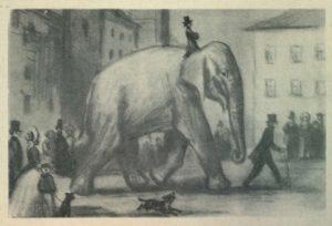 Картинки иллюстрации к басне крылова слон и моська 007