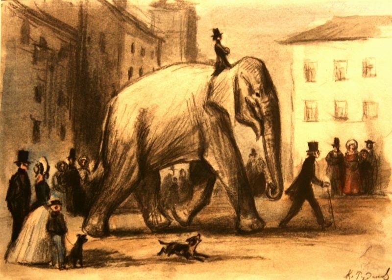 Картинки иллюстрации к басне крылова слон и моська 019