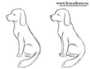 Картинки собаки карандашом 009