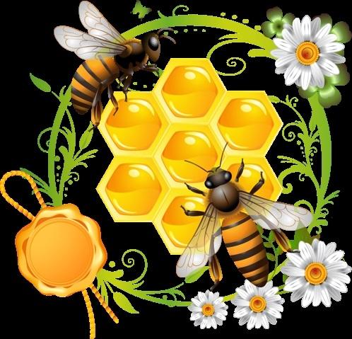 Мед и пчелы картинки для детей 021