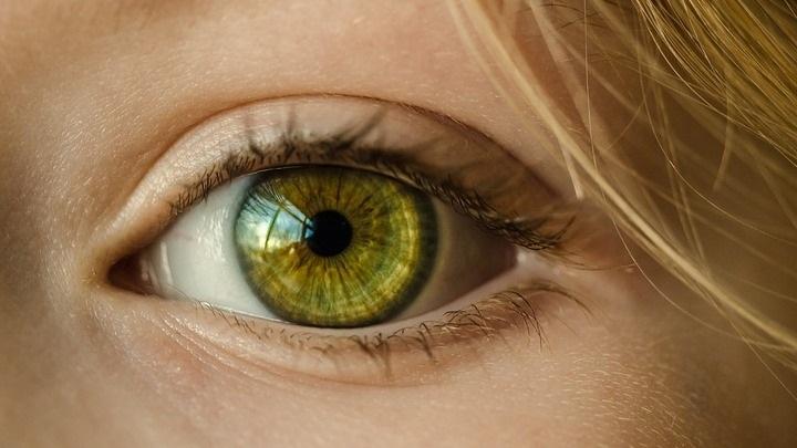 Международный день слепых 012