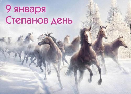Милые картинки на именины Степана (9)