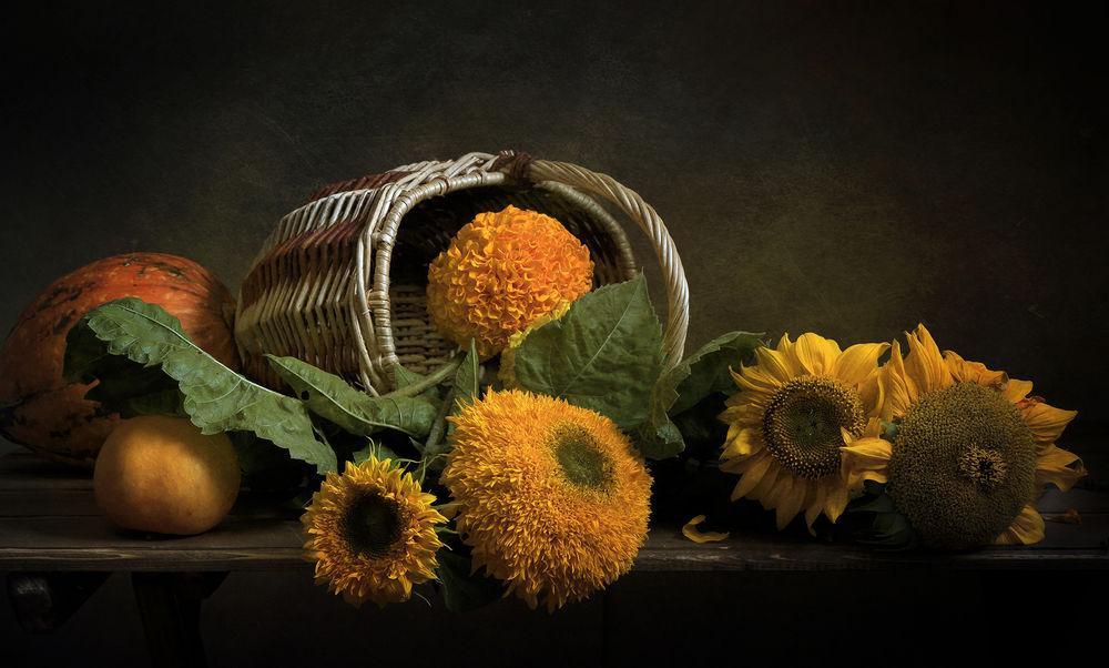 Обои для рабочего стола осенние цветы   скачать бесплатно (25)