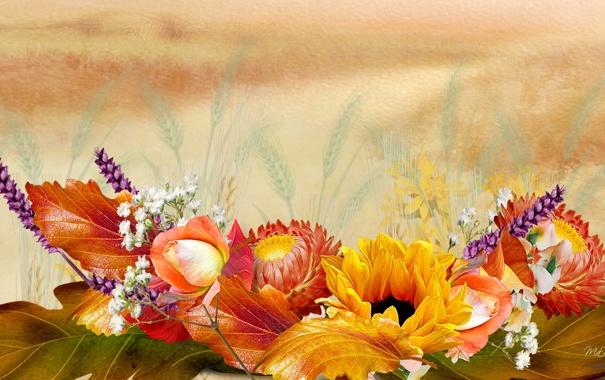 Обои для рабочего стола осенние цветы   скачать бесплатно (4)