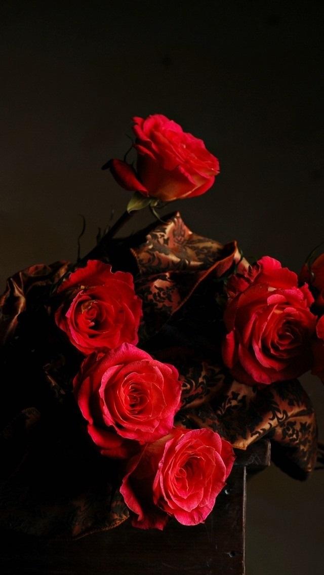 Обои красные розы на айфон 23 40 016