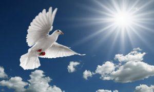 Следующий за Пятидесятницей (за Троицей) понедельник Духов день 016