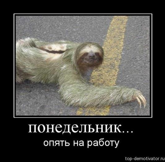 Смешные фото про работу в понедельник 011