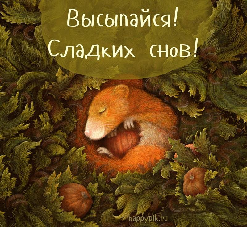 Спокойной ночи осенью милые картинки (11)