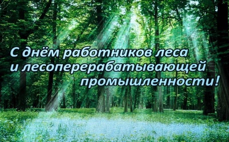 Третье воскресенье сентября День работников леса 24 098 020