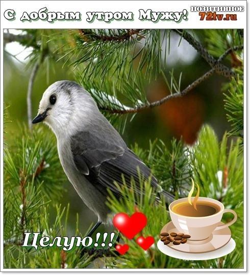 Удивительные открытки октябрьское утро 009
