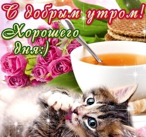 Утро воскресенье картинк и открытки012